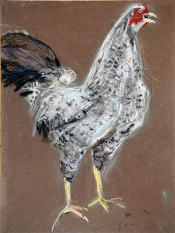 Rooster, pastel