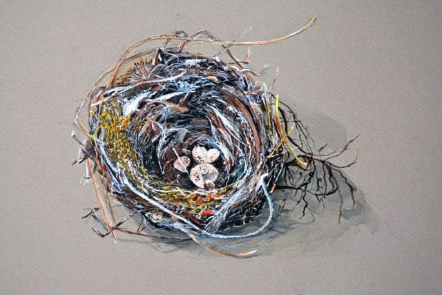 Wren Nest, watercolor
